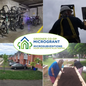 A collage of photos showing a bike rack, lights being replaced, newly planted trees, and a community garden