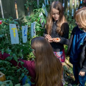 2020 Greener Co-op Microgrants awarded – program growing thanks to more funding partners