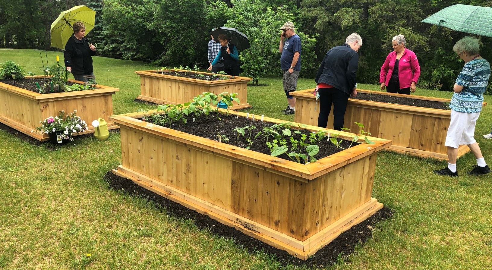 Co-op community garden becomes a community gathering place