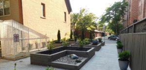 Raised garden beds in a shady walkway between buildings
